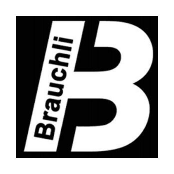 https://brauchli-gmbh.ch/
